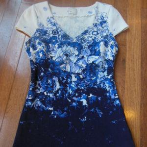 POSTMARK XS Blue Ombre Floral Knit Top Cap Slv